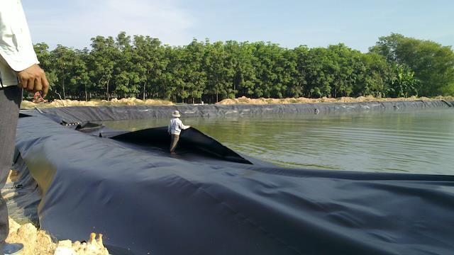 bạt chống thấm HDPE